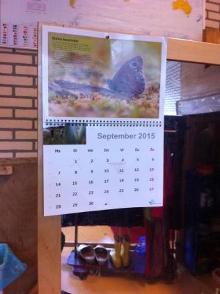 Op de grote spiegel hangt de kalender.